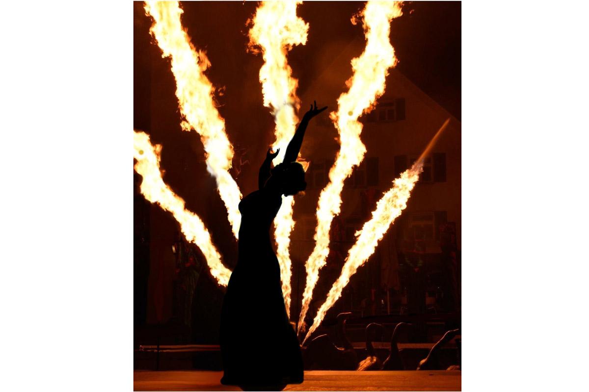 Rothdach-Feuerwerk-Flammen